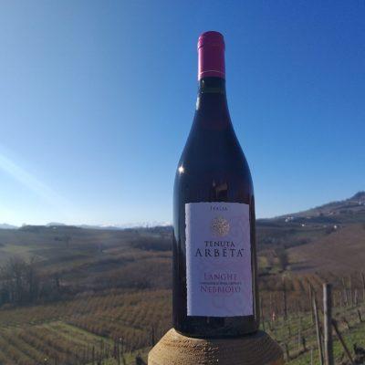 Red wine of Piedmont: Nebbiolo Tenuta Arbéta