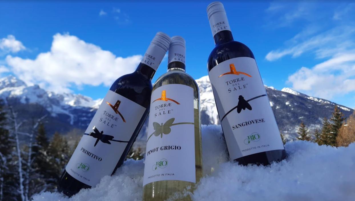 Organic wine: the characteristics of Torrae del Sale