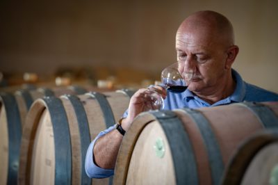 Winemaker: passion for wine and techniques