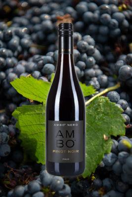 Best Pinot Noir wine ambo