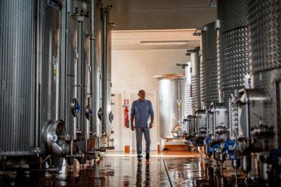 Best pinot noir wine Alessandro Berselli