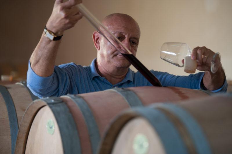 Primitivo wine Berselli