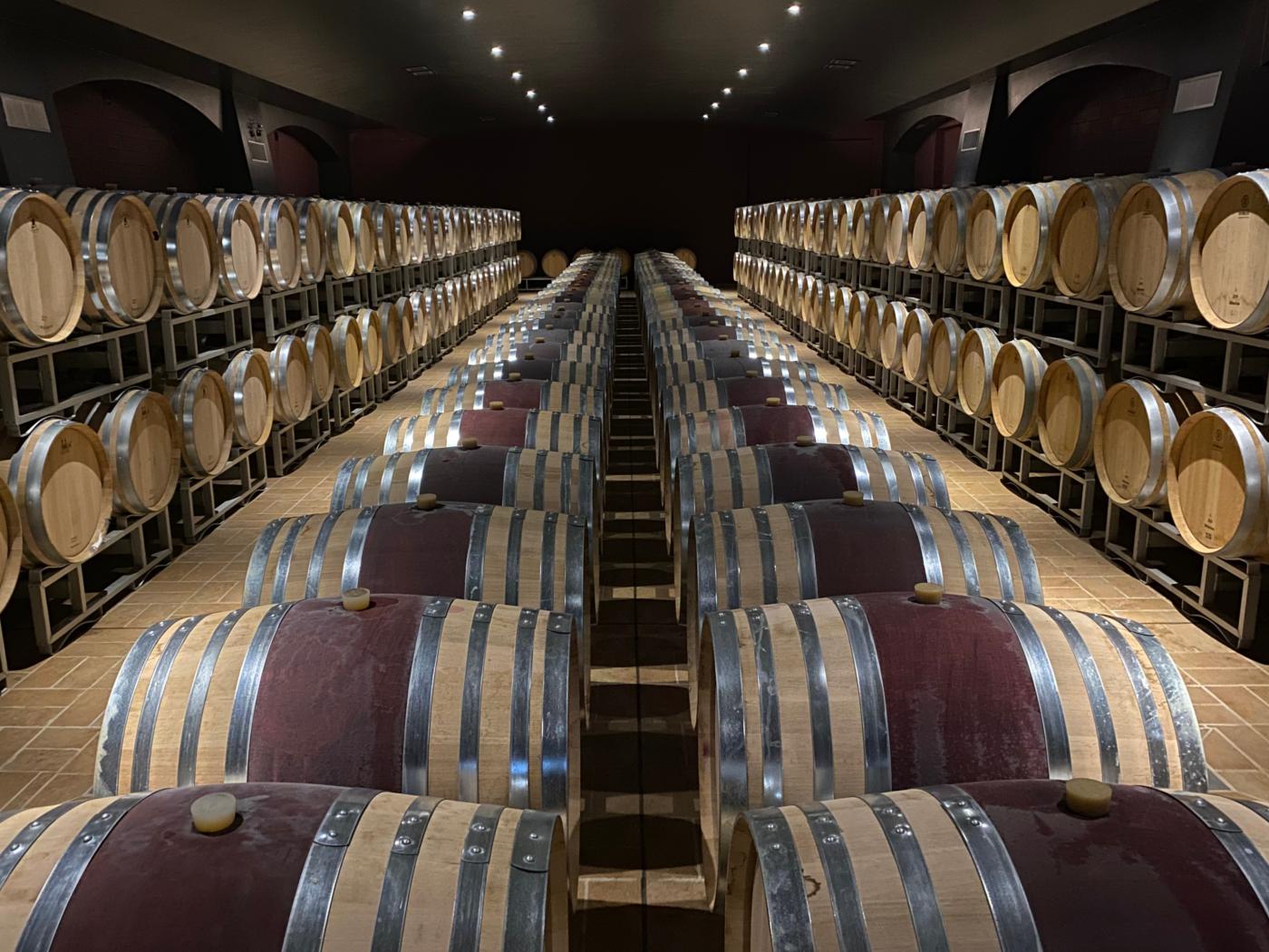 vino passito botti
