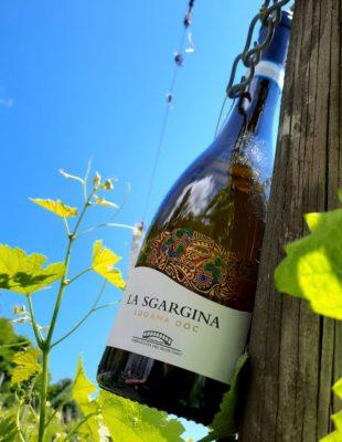 vitigno autoctono La Sgargina Lugana DOC
